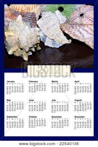 Conchas y erizos 2012 Calendar