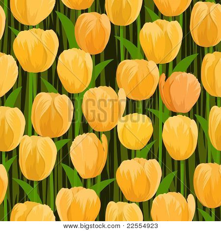 tulip flowers field seamless
