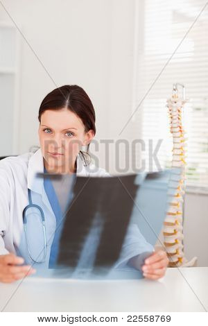 A female doctor is holding a x-ray