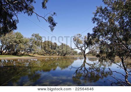 Water Hole (Billabong)