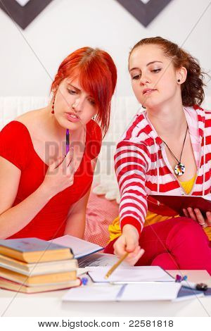 Two Concentrated Girlfriends Studying