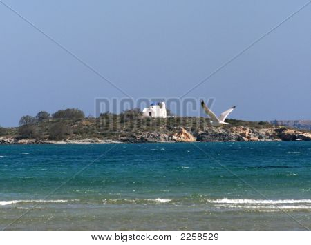 Beach And Seagul With Greek Orthodox Church In Background