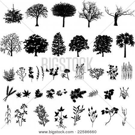 Árboles, plantas y flores, silueta negra, vector