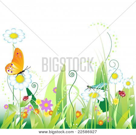 Floral background with insects. Summer. Vector illustration.