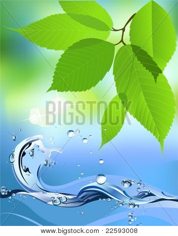 Water Wave and leaves. All elements and textures are individual objects. Vector illustration scale to any size.