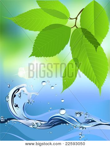 Water Wave and leaves. Raster version of vector illustration.