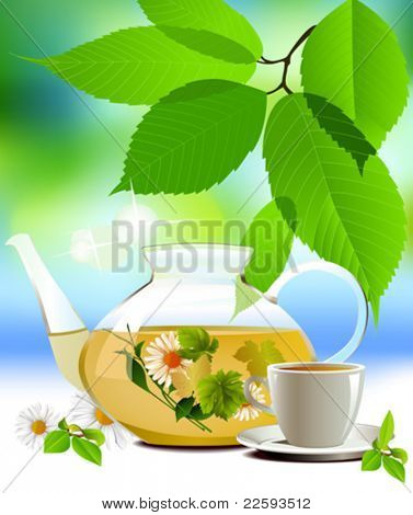 Glass teapot and cup with tea.  All elements and textures are individual objects. Vector illustration scale to any size.