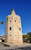 foto of zar  - The gold tower next to the guadalquivir river - JPG