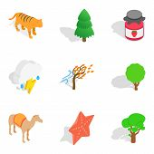 Forested Area Icons Set. Isometric Set Of 9 Forested Area Vector Icons For Web Isolated On White Bac poster
