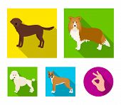 Dog, Laika, Beagle And Other  Icon In Flat Style.poodle, Animal, Ears Icons In Set Collection. poster