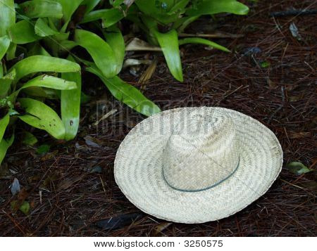 Photo Of A Hat On The Ground