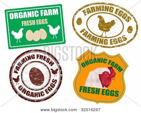 Farming Eggs Labels And Stamps