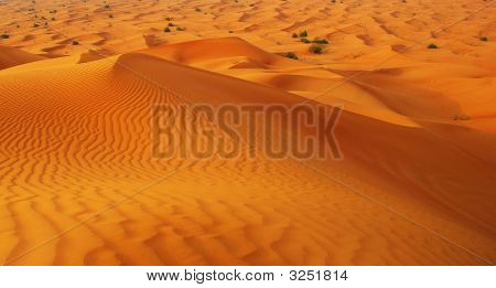 Desert Around City Dubai