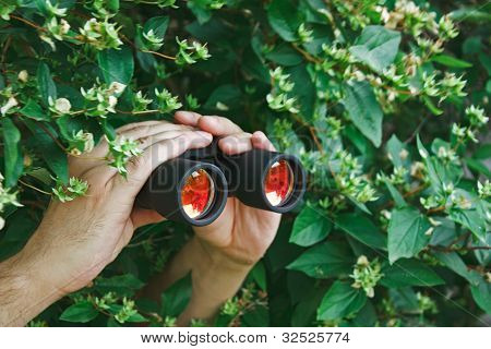 Watching With Binoculars
