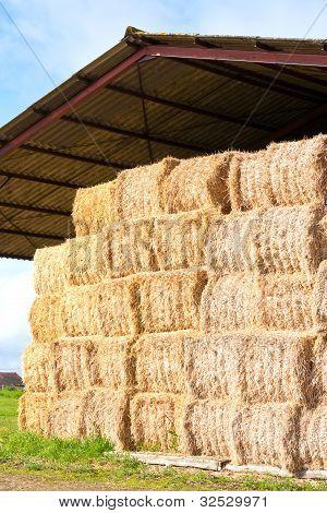 Haystack Stored