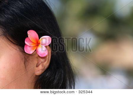 Woman With Frangipani