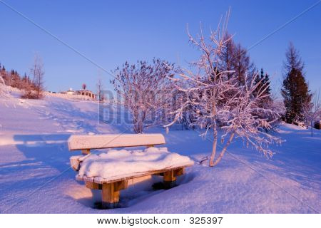 Frozen: Bench