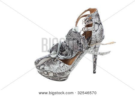 Luxury Snake Leather Women Shoe On White Background