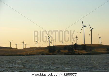 Delta Wind Farm