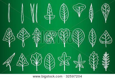 Coleção de silhuetas de folhas no Conselho escolar