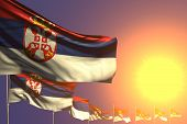Wonderful Many Serbia Flags Placed Diagonal On Sunset With Space For Your Content - Any Holiday Flag poster