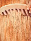 Haircare, Choosing Best Conditioner For Tangled Hairstyle Concept. Blonde Woman Brushing Her Hair Wi poster