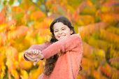 October Makes The Landscape Radiant. Happy Small Girl Enjoy Fresh Air On October Day. Little Child P poster