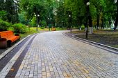 Gray Stone Walkway In The Morning Autumn Park With Orange Benches. Mariinsky Park Near The Parliamen poster