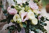 Wedding Bridal Bouquet. Bridal Bouquet Of White And Pink Colors. Bride With Bouquet, Closeup poster