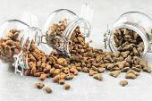 Dry pet food. Kibble dog or cat food in jar. poster