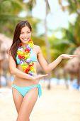 stock photo of hula dancer  - Hawaiian dance  - JPG