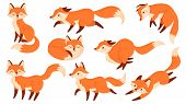 Cartoon Red Fox. Funny Foxes With Black Paws, Cute Jumping Animal. Foxy Character, Predator Fox Masc poster