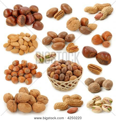 Nuts Collection