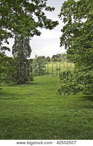 Park landscape.