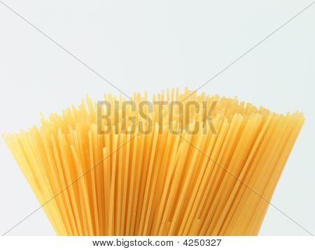 Spaghetti Bunch