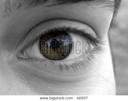 Close Up Of A Girl Eye