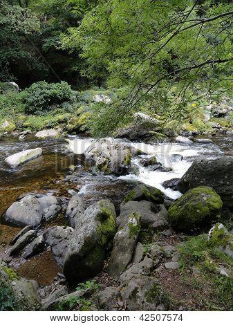 Rocky River Landscape