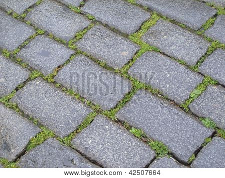 Paving Stones And Grass
