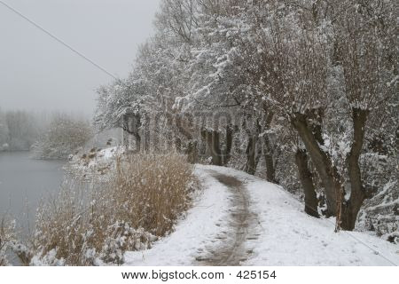 Snow Landscape Near River