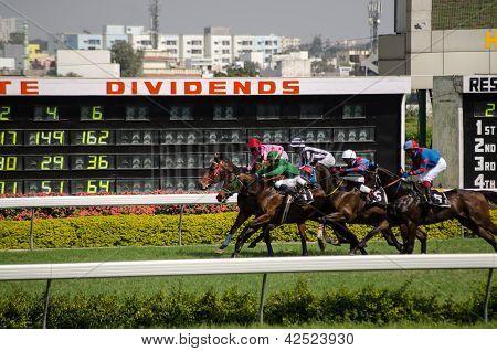 Horse racing in Hyderabad