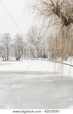 Wintry City Park In Kampen, Netherlands