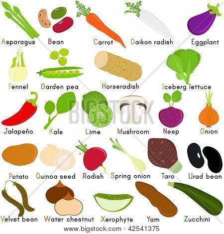 Regreso a la escuela: un Set de Vector iconos de vegetales que representan alfabeto A Z - diccionario para Ki