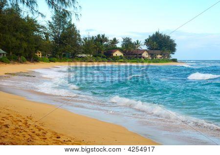 Beach With Condos