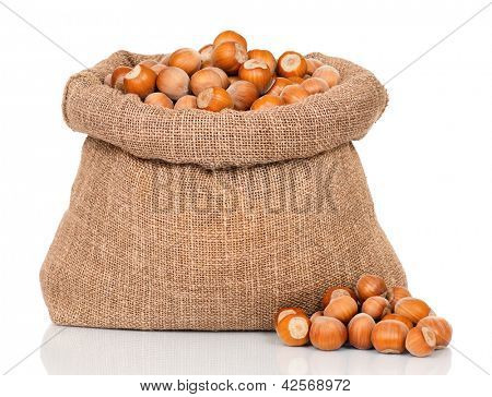 Filberts in burlap sack, isolated on white background