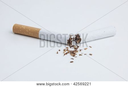 The Cigarette on white back group