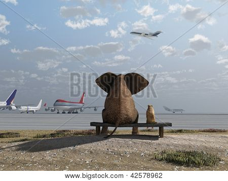 elephant and dog sitting at the airport
