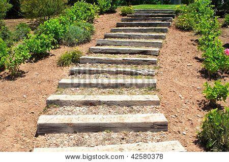 Wooden Stairs In The Garden. Summer.