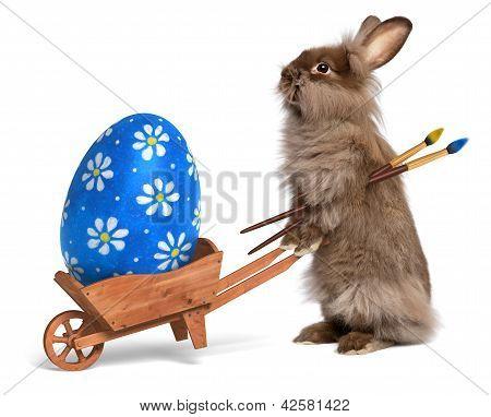 Divertido Easter Bunny Rabbit con una carretilla y un huevo de Pascua azul