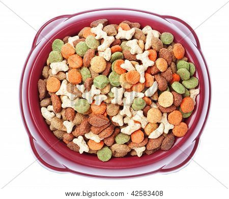 Plate Of Food For Dogs And Cats From Above. On A White Background.