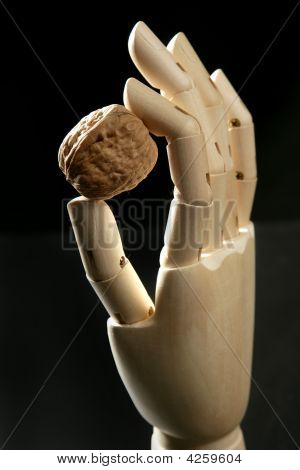 Mannequin Wooden Hand Holding One Walnut